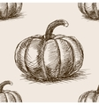 Pumpkin hand drawn sketch seamless pattern vector image vector image