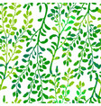 seamless pattern with herbs foliage and plants vector image vector image