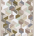 seamless pattern with hexagonal woven shapes vector image vector image