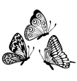 black and white butterfly isolated on white vector image vector image