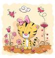 cute cartoon tiger on a meadow vector image vector image
