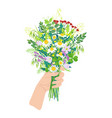 female hand holding wild flowers vector image