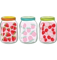 fruit jar vector image
