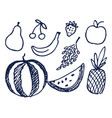 fruits hand drawn elements vector image