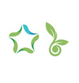 leaf logo symbol star leaf seed logo template vector image vector image