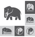 elephant icons and symbols vector image vector image