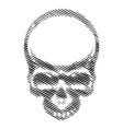 retro vintage skull vector image