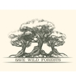 Save Wild Forests vector image vector image
