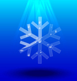 Snowflakes crystal vector image vector image