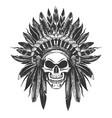 native american indian skull in war headdress vector image