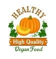 Autumn harvest pumpkin vegetable symbol vector image
