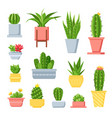 cactus and succulents cute cartoon cacti in pots vector image