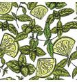 seamless mojito pattern vector image vector image