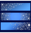 Set of banners with decorative 3d snowflakes vector image vector image