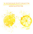 set of watercolor lemon vector image