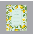 Tropical Floral Colorful Frame Wedding Card vector image vector image