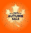 linear autumn sale banner vector image