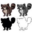 set raccoon character vector image