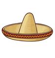 sombrero mexican hat vector image vector image