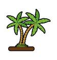 Tree palms nature