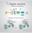 digital camera working with diagrams vector image