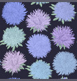 beautiful seamless pattern with aster flowers vector image vector image