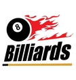 Billiards symbol vector image
