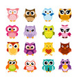 colorful cartoon funny owls vector image vector image