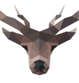 Deer polygons horned animal head logo vector image vector image