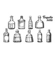 stylish collection tequila glass bottle set vector image