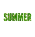 Summer greeting card inscription in capita vector image vector image