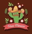 viva mexico traditional celebration vector image vector image