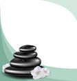 Background with spa stones and white flower vector image