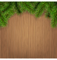 fir branches on wooden boards vector image