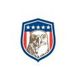 American Bald Eagle Head Stars Shield Retro vector image vector image