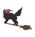 cat on a broomstick isolate on a white background vector image vector image