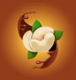 chocolate splash and cashew realistic vector image vector image