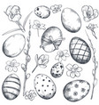collection of hand drawn ornate easter eggs vector image