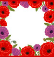 frame with poppies for greetings vector image