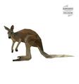 Kangaroo polygon vector image vector image