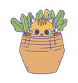 little cat in basket with nature icon vector image