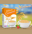 oatmeal ads realistic vector image vector image