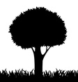 silhouette of a tree and grass vector image vector image