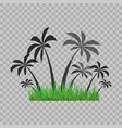 palm trees silhouette and green grass on the vector image