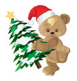 cute bear in a red hat with new years fir-tree vector image vector image