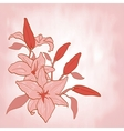 Flower lily Invitation or greeting card vector image vector image