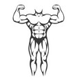 male body muscle black silhouette vector image vector image