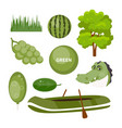 objects green color vector image vector image