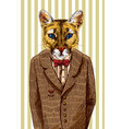 puma in a jacket vector image vector image