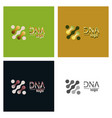 set of dna design over white background vector image vector image
